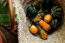 Le Jardin Potager / Kitchen gardens / by L M Gray Bijouxs.com