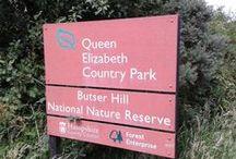 Queen Elizabeth Country Park & Butser Hill