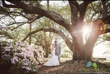 Lowndes Grove Plantation Wedding / This Lowndes Grove Plantation had it all, from a weather report that called for rain was oh so wrong and a surprise musical guest that was oh so right Enjoy all the scrumptious details! .