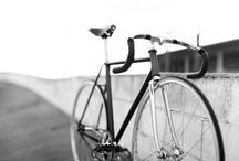 Cycling Porn / by Matthew Brown