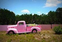 Ford Tough Girls / Every girl deserves a Ford! Look here to find your dream car, maybe even in pink! #GirlPower #FordTough #Ford  / by Zeck Ford