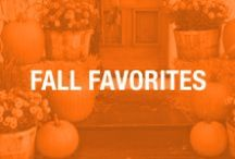 Fall Favorites  / Tips, Decor, and DIY for Fall  / by Skinny Mom - Healthy Living for Women