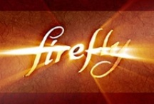 Firefly/Castle / by Vickie Snow Anderson