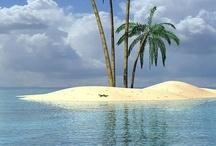 The beach is calling..... / by Sharon Koniak Elledge