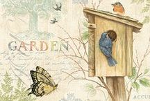 Vintage Illustrations & Prints / by Mary Ann Stewart