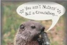 Groundhog Day / Groundhog Day humor
