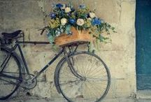 I want to ride my bicycle... / bicycles