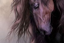 I SOOO LOVE HORSES (& Cowboys)!! / Horse have been a passion of mine since I was very young.  Had a few of my own on my parent's farm, trained young kids to ride & babysat a few.  Rode western & bareback.  Maybe one day again....?? / by Sharon Hagel