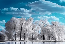 **Winterscapes**