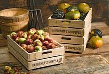 Harvest Home / Harvest and preserve the bounty of your garden. / by Gardener's Supply Company