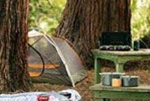 Camping / by Ashley Caldwell