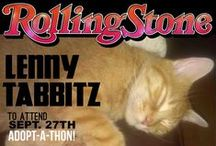 Annex Cat Rescue's Feline Friday Cats