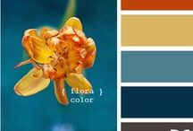 color pallets. / by Dominique Giovando