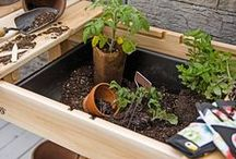 The Potting Shed / by Gardener's Supply Company