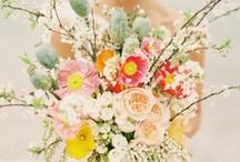 Wedding Day Ideas / by McKenzie Reutinger