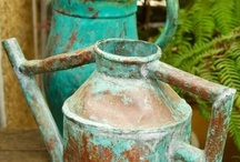 Watering Cans / by Vicki Stokes