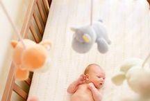 Babytod ~ photography / by Ru'cucu