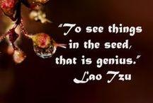 Spirituality ~ Lao Tzu ~ / by ~ Vicki ~