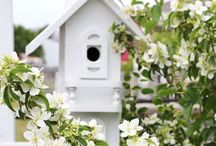 Bird and bug houses / by Elke Richard