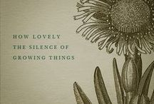 Silence / by ~ Vicki ~