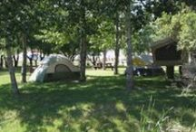 Camping / There are so many choices when it comes to camping in Custer. You can stay in a cabin, RV, or good 'ol tent camping. Check out your options!