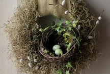 Craft & DIY Ideas For Adults