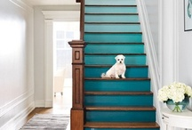 """Decorating """"Likes"""" and Ideas / by Amy Zimmerman"""