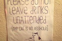 Hilarious / by Alyssa Horn