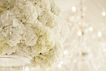 white + ivory wedding