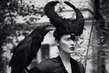 Raven / Crow / by Jennie King