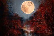 Moon / by Jennie King
