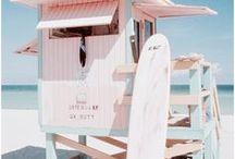Summer Vibes / summer, beach, ocean, summer plants, summer fun