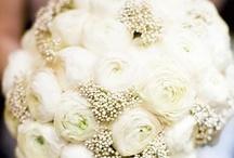 Wedding Day / by Stefani Miller