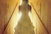 Dream dresses / by Rebekah Pennington