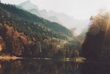 Nature / by Rebekah Pennington