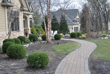iGarden...Land Scapes Possibilities