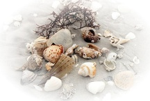 Home...By the Sea / Ideas and inspiration for a beach vibe