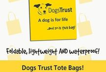 Fundraising at Dogs Trust / Raising pounds for our hounds!