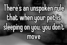 Things dogs teach us.... / Dog people know the amazing lessons taught through our dogs......shared by the folks at www.aloveofdogs.com; shopping for a cause!