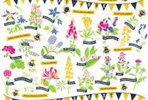 Bee Stuff / by Kathy Vondersaar