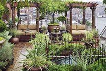 GARDEN:  ROOFTOP, TERRACE & COURTYARDS / Rooftop, terrace and courtyard gardens.