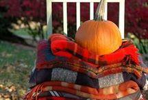 fall is the greatest season / by Sarah Hatton