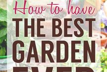 "GARDEN:  SOURCES, TIPS, DIY / Gardening sources, tips,""how to"" instructional guides and DIY."