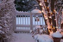 GARDEN:  WINTER / The garden in the fabulous fall and striking winter gardens.
