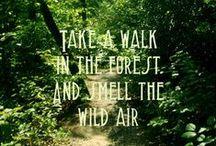 Go take a hike!