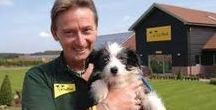 Dogs Trust Help and Advice / Top tips and help for you and your best friend!