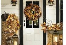 Fall / by Emily Nunes