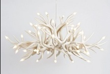 Lamps / by Suzanne White