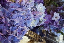 FLORAL ARRANGEMENTS / by Anne Eppright