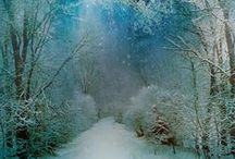 Winter Wonderful / Beauty is in the eye of the beholder... Winter & all its trappings can be peaceful & an absolute wonder if you can get beyond the cold... / by Pam Wallace